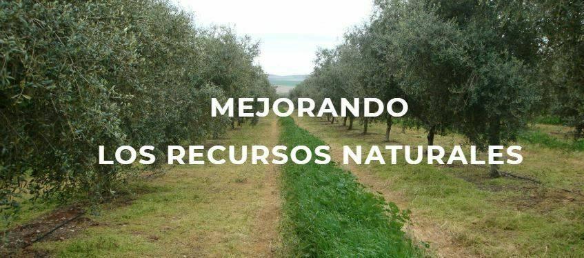 Agricultura de conservación y pérdidas de suelo fértil