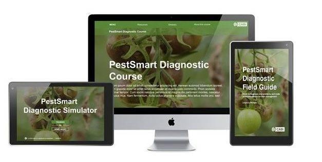 PestSmart, para diagnosticar plagas y enfermedades