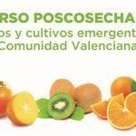 Curso para conocer el manejo poscosecha de frutas y hortalizas