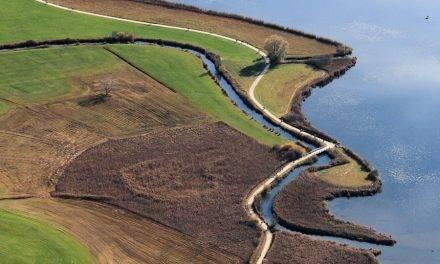 Agricultura de precisión e imágenes satelitales en el cultivo