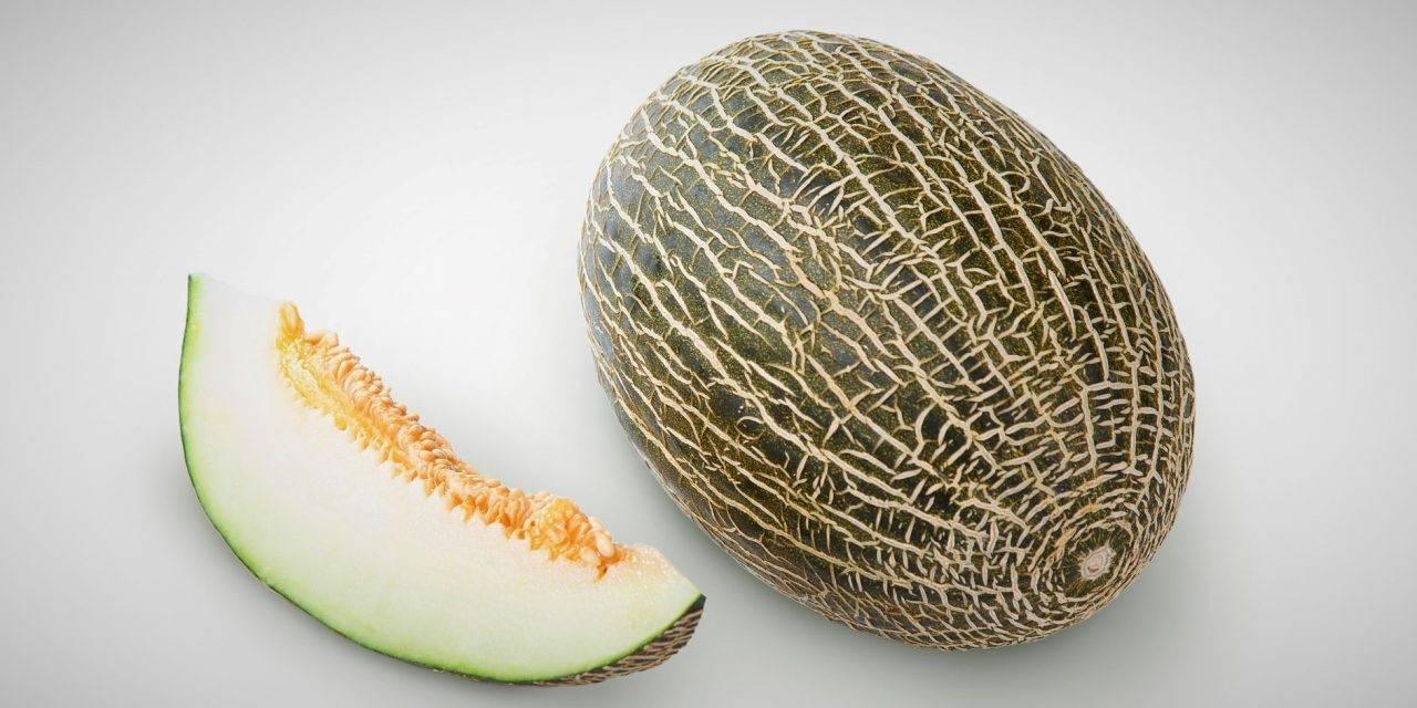 Variedades de éxito en melones piel de sapo: Paredes, Ceferino y Arroyo