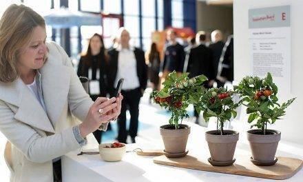 Los 10 nominados para los Premios a la Innovación en la Fruitlogística 2019