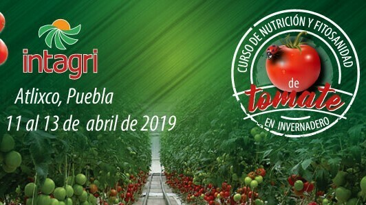 Curso de nutrición y fitosanidad de tomate en invernadero en México