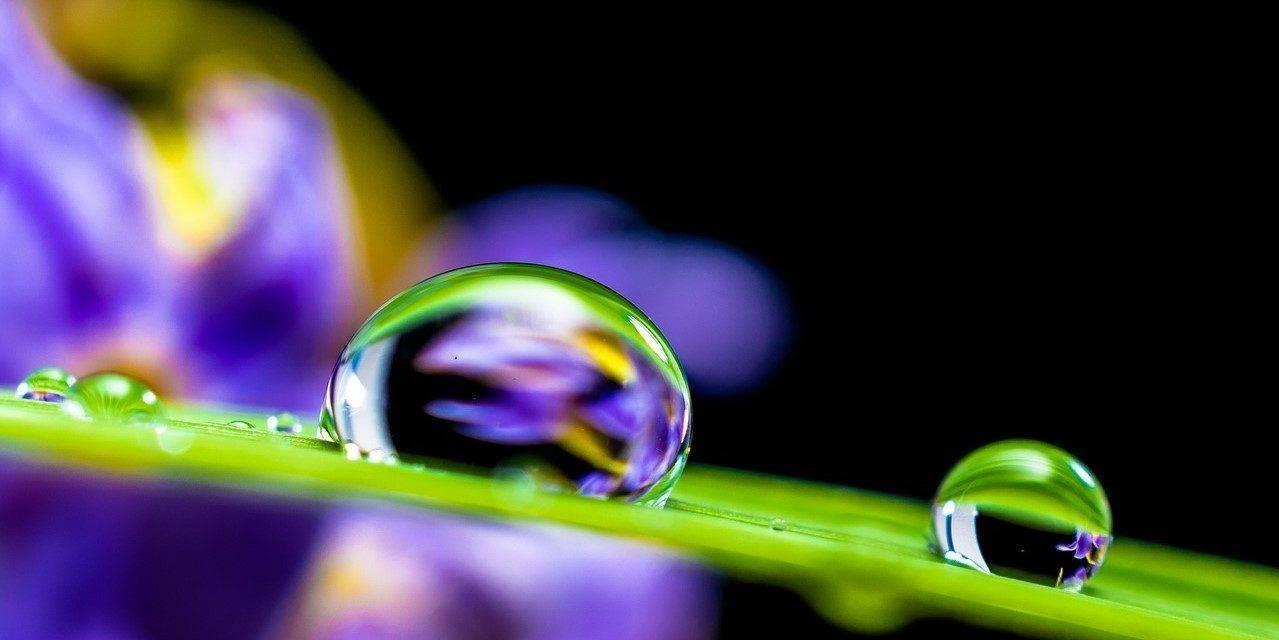 El agua precisa una gestión sostenible