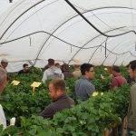 Productores de la provincia del Huelva conocen las técnicas más vanguardistas en eficiencia del riego