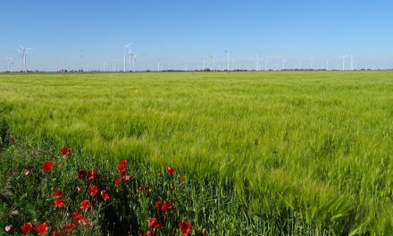 La Agricultura de Conservación frena la degradación de suelos por la erosión hasta en un 90%