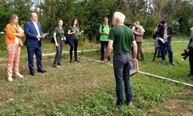 NEIKER muestra las posibilidades que ofrecen los cultivos ecológicos