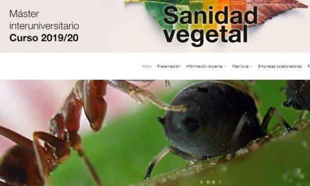 Máster interuniversitario en Sanidad vegetal