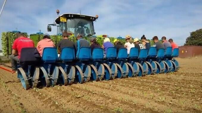 Evolución y futuro de la maquinaria agrícola en la hortofruticultura