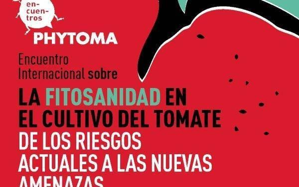 Reunión de expertos sobre sanidad del cultivo del tomate