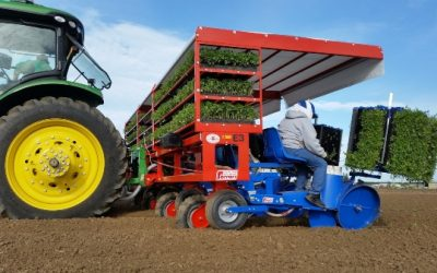 Ferrari: Transplanter F-MAX is fitting for planting several crops