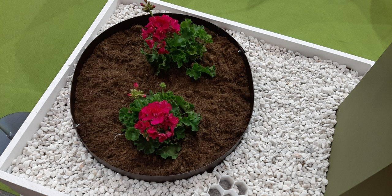 Borduras para formas circulares y macetas sostenibles