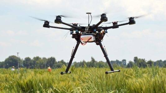 Jornada IRTA de teledetección y agricultura de precisión