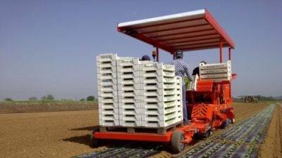 Trasplantadora de Ferrari puede sembrar 5 mil plantas por hora