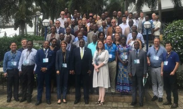 Scientists and Researchers Meet in Maputo to Discuss Strategies to Combat Banana Diseases