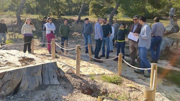 Red de investigación en gestión forestal para mitigar el impacto del cambio climático