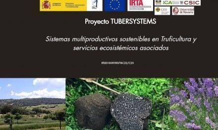 Tubersystems mejorará el cultivo de la trufa negra y su sostenibilidad
