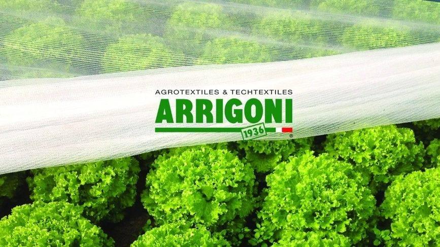 Paolo Arrigoni, sobre las operaciones del Grupo Arrigoni
