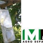 Autorización excepcional para controlar plagas de cítricos con feromonas