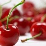 Como mejorar la firmeza y resistencia del fruto