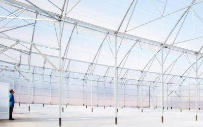 Los invernaderos tecnológicos en la horticultura moderna