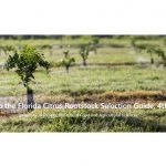 4th Edition of the Florida Citrus Rootstock Selection Guide