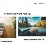 Una empresa de software de USA presenta una web para venta de plantas sin contacto