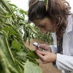 Fundación Cajamar en el consorcio SmartProtect para la gestión eficiente de plagas