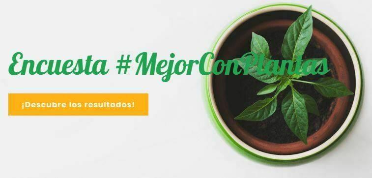 La iniciativa #MejorConPlantas para dar apoyo al sector ornamental gravemente perjudicado por la crisis del Covid-19