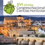 El XVI Congreso de la SECH se celebrará en Córdoba en 2021