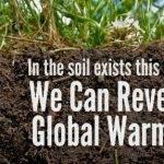Agricultura regenerativa, una opción doblemente win-win para hombre y medio ambiente