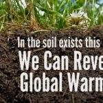 Regenerative agriculture, a quadruple win for man and environment