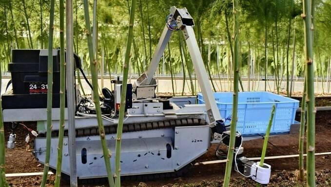 Empresa japonesa desarrolla robot autónomo para recolección de verduras en invernadero