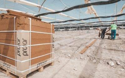 Cómo maximizar las ventajas de incorporar fibra de coco al suelo