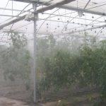 El riego con agua reciclada una alternativa posible en Australia