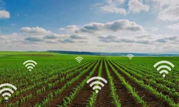 La utilización de Internet en agricultura moderna