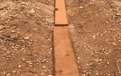 Mezclas de fibra de coco que mejoran las condiciones del suelo en cultivos hortícolas