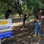 El proyecto CARBOCERT en la agricultura mediterránea puede contribuir a la mitigación del cambio climático