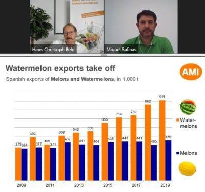 La sandía continúa en alza y Europa del norte empieza a apreciar los melones verdes