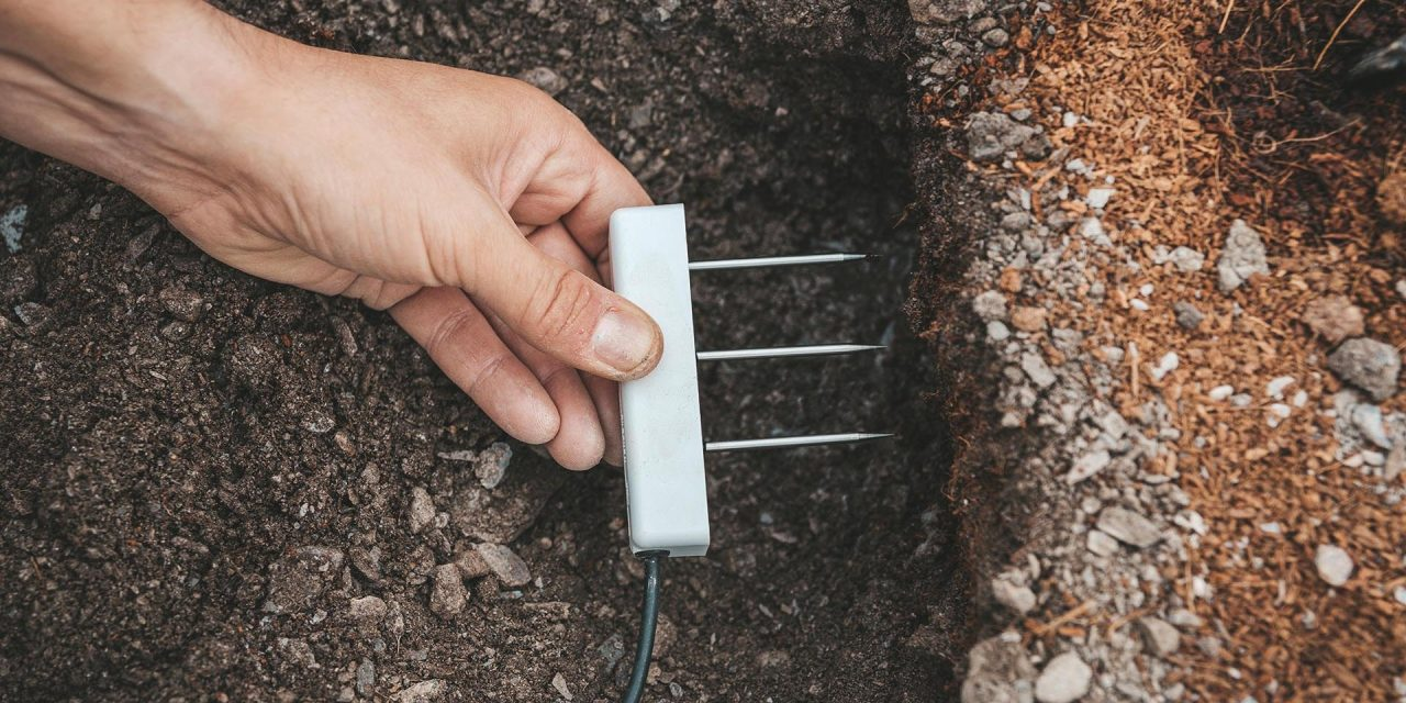 Projar estudia el manejo del riego en fibra de coco mediante equipos de alta tecnología