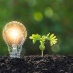 Aplicación colaborativa para avisar de incidencias medioambientales