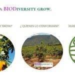 La transición hacia la sostenibilidad