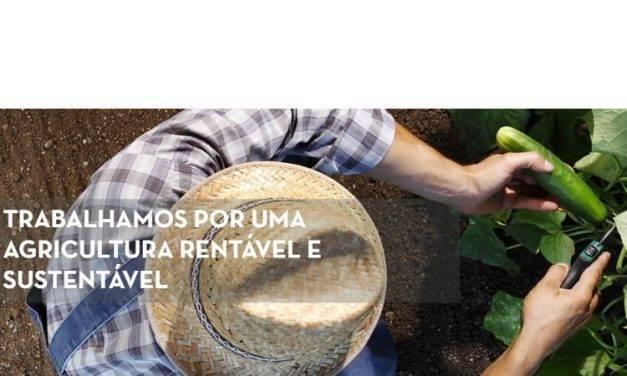 Fitó estrena una web en Portugal
