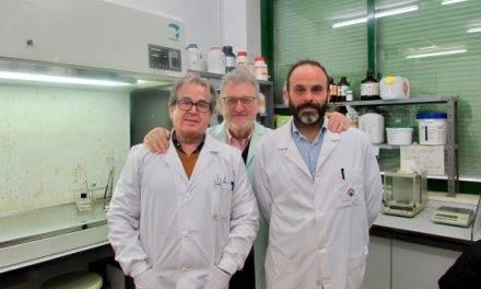 Investigadores de la UCO buscan nuevas estrategias para proteger el cultivo de la fresa en el Mediterráneo