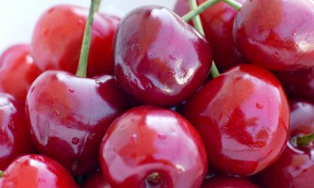 La segunda edición de Xtrema Fruit se celebrará online el próximo 5 de noviembre