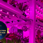 Los módulos de Cultivo Vertical de Novagric, finalistas a los Fruit Attraction Innovation Hub Awards