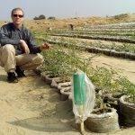 Huertas en el desierto, algo posible gracias a nanoarcillas