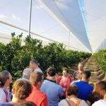 Las estructuras, plásticos y mallas de la agricultura protegida