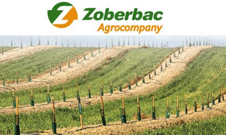 Zoberbac: protección y nutrición para tus cultivos