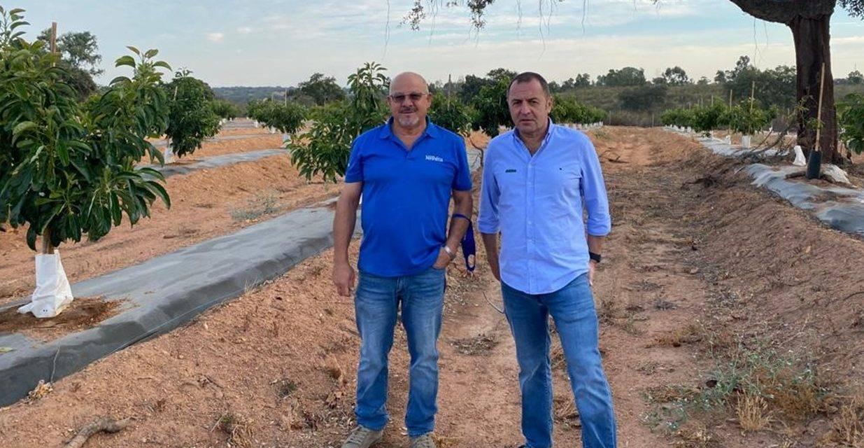 Reducción de hasta el 50% del aporte de nitratos con el uso de NHDelta de Ecoculture